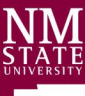 New Mexico State University - Department of Physics